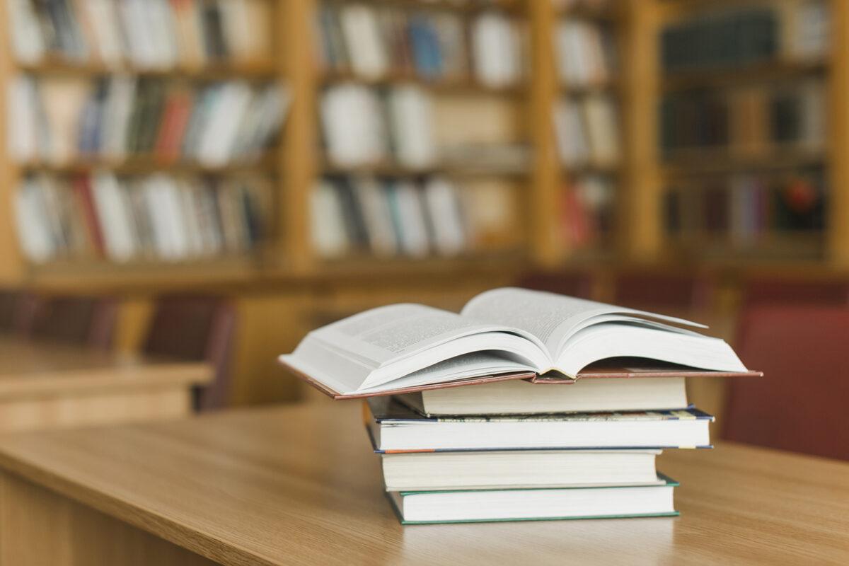 Dia Nacional do Livro: CEOs indicam leituras inspiradoras para quem quer empreender